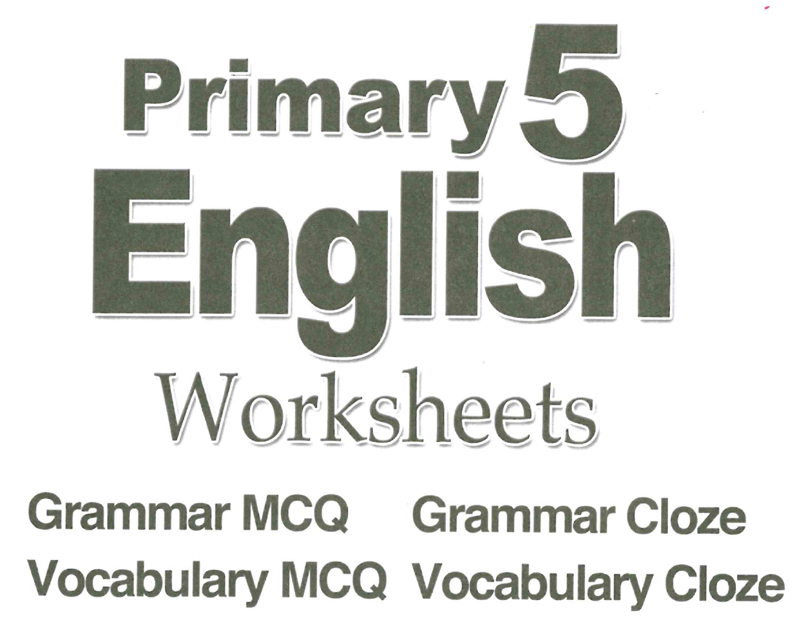 Primary 5 English Assessment Book