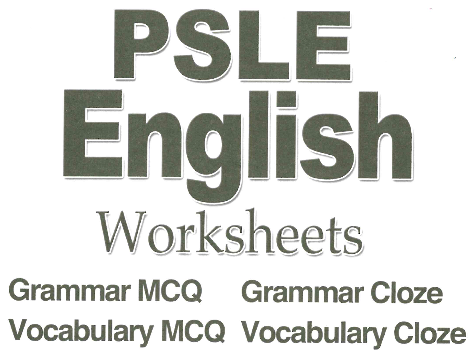 Primary 6 English Assessment Book